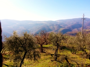 My secret Sunday escape in Tuscany